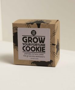 Grow your own fortune cookie box